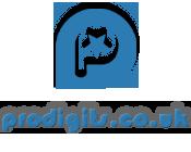 prodigits.co.uk