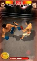 Iron Fist Boxing 4.1.0