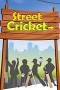 Street Cricket T20