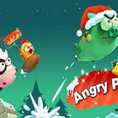 Angry Piggy Seasons