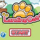 Landing Cat