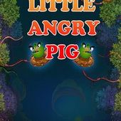 Little Angry Pig