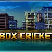 Box Cricket
