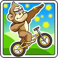 BMX Crazy Bike 2