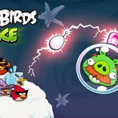Angry Birds Space Premium v1.2.2 APK