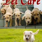 Pet Care - All about Dogs
