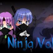 Ninja Volley 2013