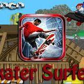 Skater Surfers