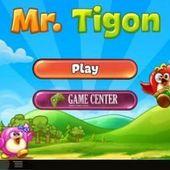Mr.Tigon - Block the Birds