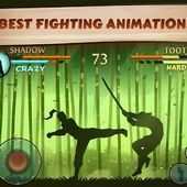 Shadow Fight2