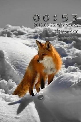 Snow Fox Go Locker