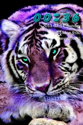 Purple Tiger Go Locker
