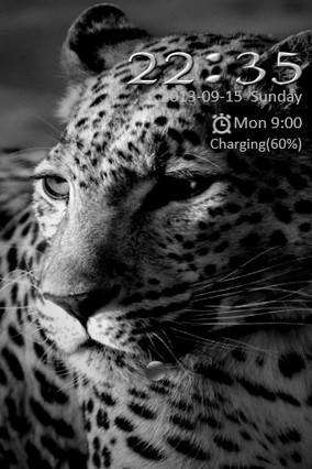Leopard Go Locker