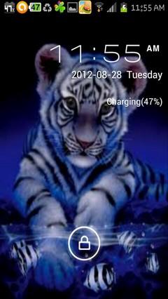 blue tiger cub