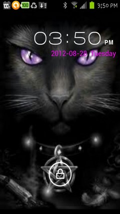 wiccan cat locker