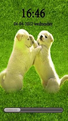 Charming puppies HD GoLocker