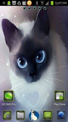 siamese kitty love