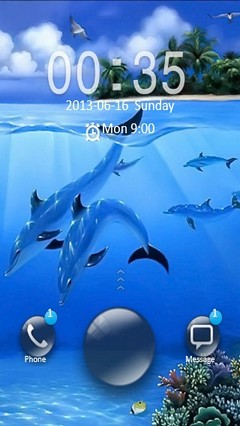 Dolphins Locker