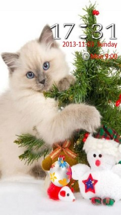 christmas cat Locker