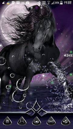 Black+Horse