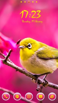 Cute Yellow Bird