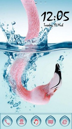 Flamingo Underwater 38