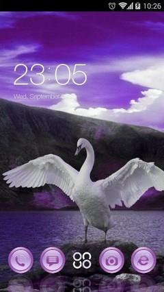 Swan DC 138