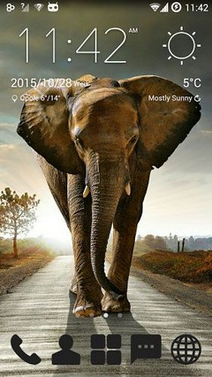 Beautiful Elephant Theme