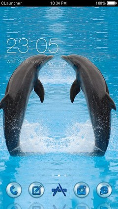 Dolphins Clauncher Theme