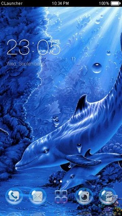 Dolphins Love Clauncher Theme