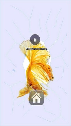 Gold Beta Fish Lock Screen