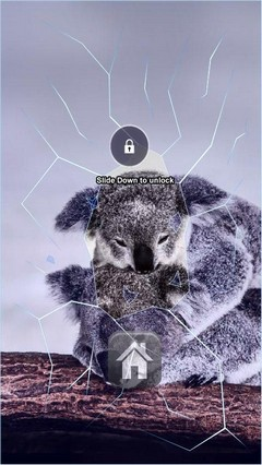 Koala Bears Lock Screen