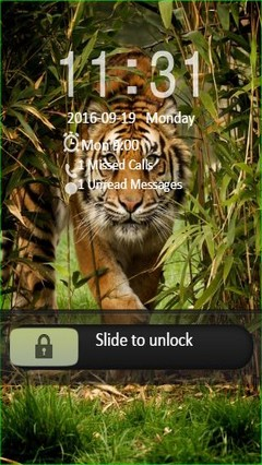 Beautiful Tiger Go Locker Theme