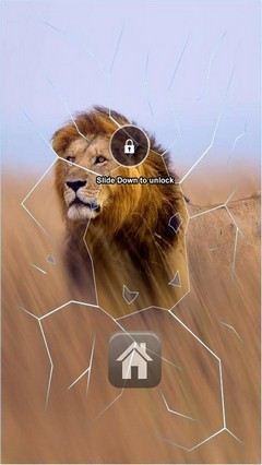 Lion The King Lock Screen