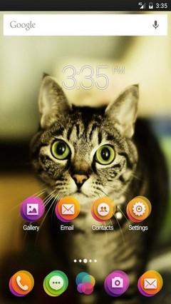 Kitty Go Launcher (Multi) Theme