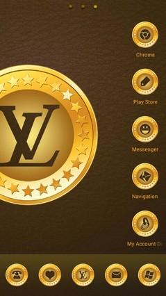 Louis Vuitton 374
