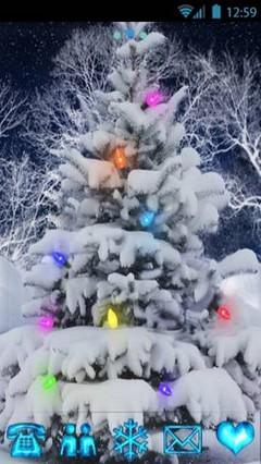 TMC Special : Christmas