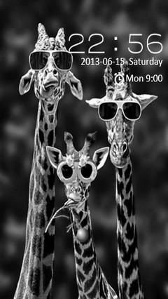 Funny Giraffes Locker