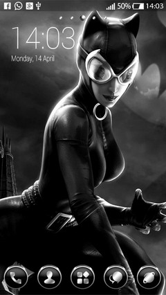 Catwoman Dc Universe 31