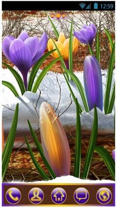 Tmc Week 349 : Spring