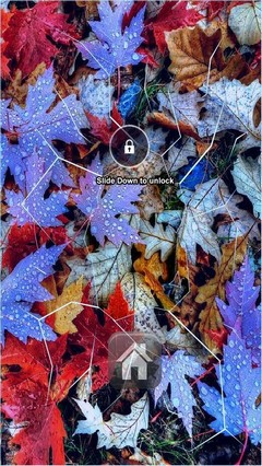 Colors Leaf Autumn Lock Screen