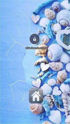 Lots Of Seashells Lock Screen