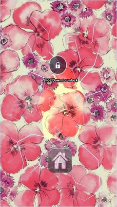 Red Flowers Lock Screen
