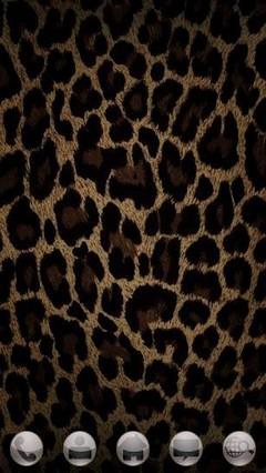 leopard Theme GO Launcher EX