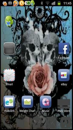 rose n skull