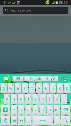 Keyboard Mint