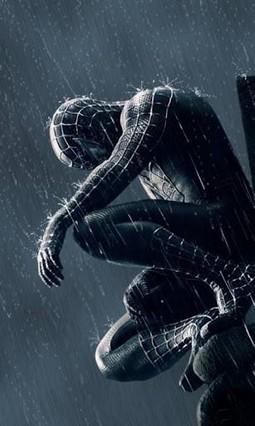 Spiderman Theme Go Locker