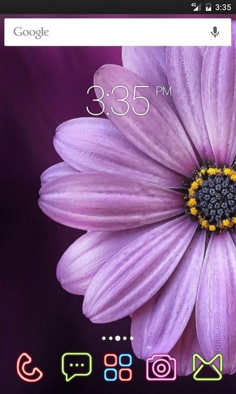 Purple daisy flower GO Launcher Theme