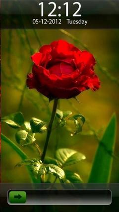 Rose Go Locker