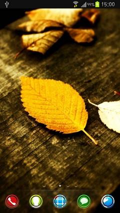 HD leaves by Im Venky